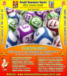 lottery-number-expert